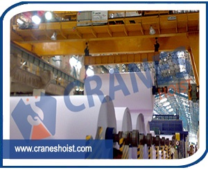 eot cranes for paper industry exporter in india