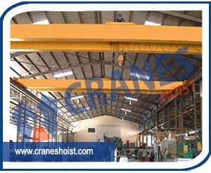 eot cranes for paper industry supplier in india