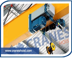 flame proof hoist manufacturers in india